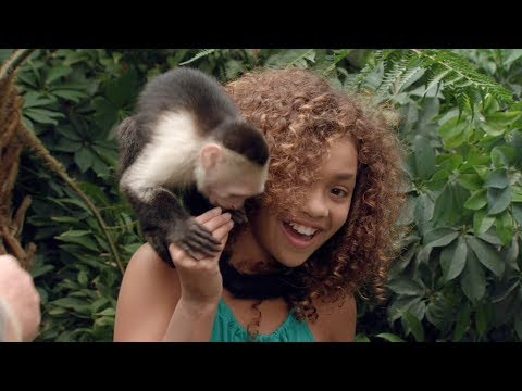 The ULTIMATE Spirit Animal Quiz - Yowie™ Rescue Series - Yowie™ World