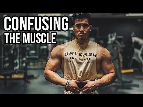 HOW TO CONFUSE THE MUSCLE 101
