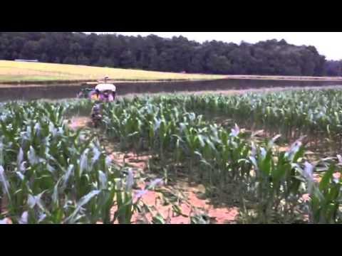 Cutting paths for corn maze