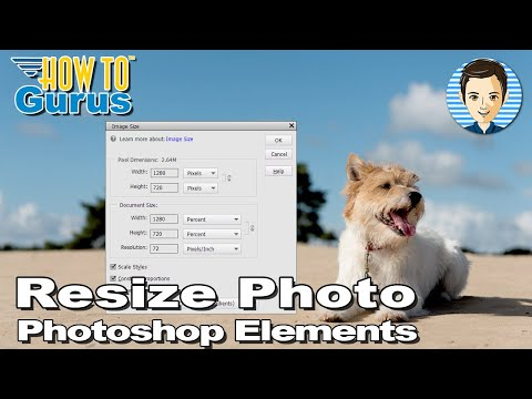 Photoshop Elements Image Size : How to Resize an Image in 2018 15 14 13 12 11 Tutorial