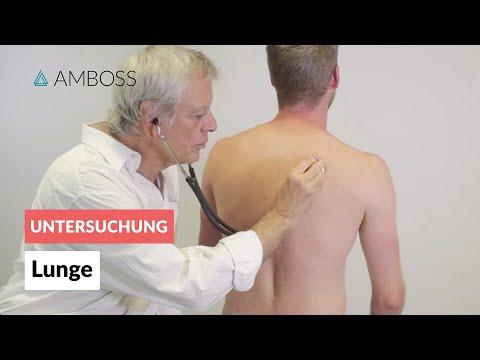 Lunge - Klinische Untersuchung (Lungenuntersuchung) - AMBOSS Video