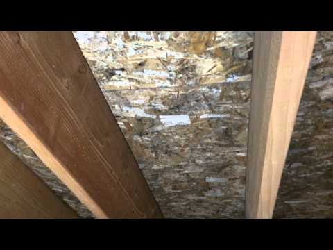Making Mold Stains Vanish in this Itasca, IL Attic