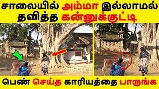 சாலையில் அம்மா இல்லாமல் தவித்த கன்னுக்குட்டி பெண் செய்த காரியத்தை பாருங்க Tamil News