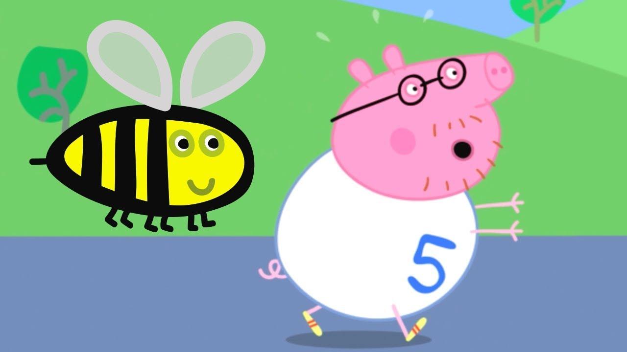 Peppa Wutz | Der Spendenlauf | Peppa Pig Deutsch Neue Folgen | Cartoons für Kinder