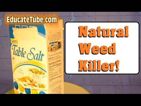 How to kill weeds along the sidewalk or patio stone tiles- Easy Cheap Fast Natural Weed Killer