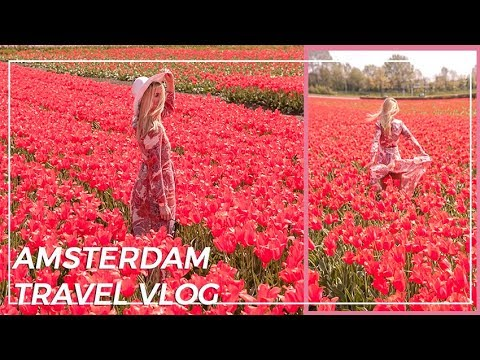Amsterdam travel vlog | TULIP TOUR IN Holand