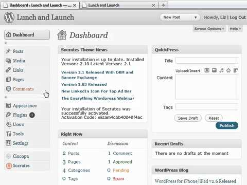 Your WP Dashboard