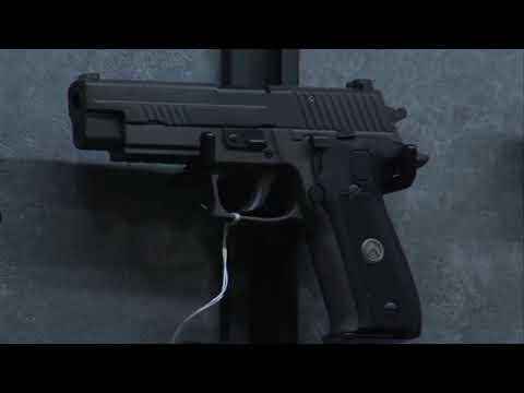 Indiana and Illinois gun laws