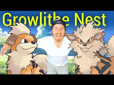 Growlithe Nest - Pokémon Go - Cluster Spawn
