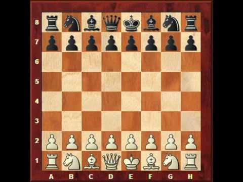 Chess lesson: piece coordination in the opening
