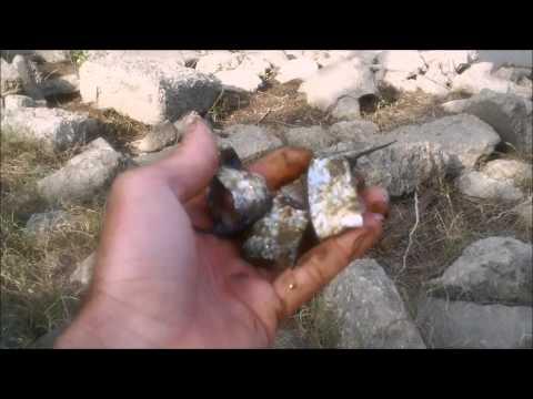 cut bait tips: finger mullet