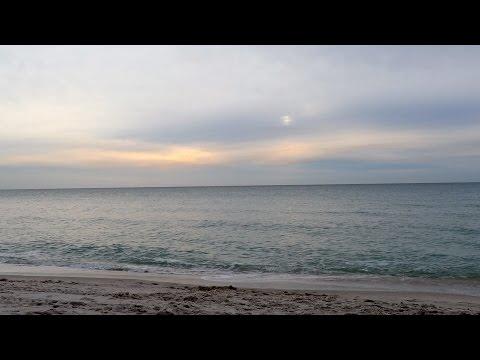 FLORIDA TRIP - January 2016