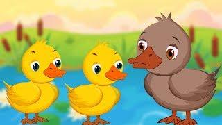 The Ugly Duckling - Fairy Tales In Hindi - बदसूरत बत्तख़ - हिंदी परी कहानी - Hindi Pari Kahani