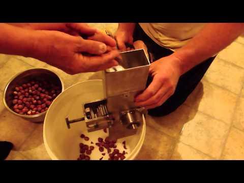 Automatic Nutcracker - New Zealand DIY