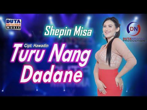 Download Lagu Shepin Misa Turu Nang Dadane Mp3