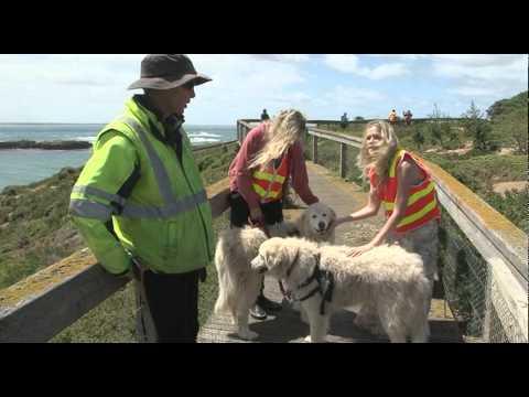 Australia's Islands New TV Series Promo V1