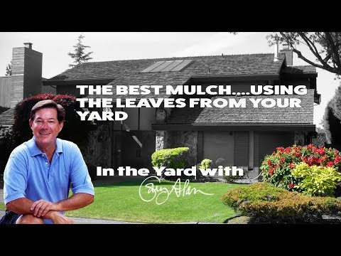 The Best Free Mulch---Using Leaves from Your Yard-In the Yard with Gary Alan