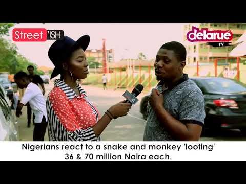 Delarue TV - Snake and Monkey Looting 36 and 70 Million Naira Each Cover