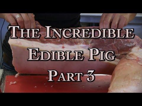 The Incredible Edible Pig Part 3