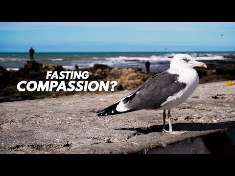 Intermittent FASTING an Act of Compassion? From Essaouira, Morocco.