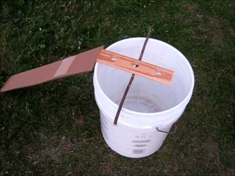 chipmunk / rodent bucket trap