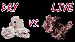 Choosing Dry or Live Rock for your Reef Tank