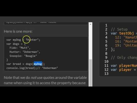 Accessing Objects Properties with Variables, freeCodeCamp Basic Javascript
