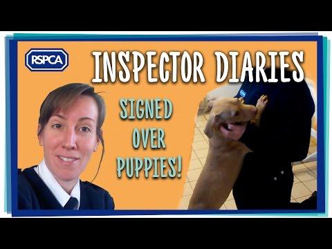 Inspector Rachel Smith Puppy Collection
