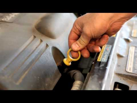 How To Check Your Engine Oil Level