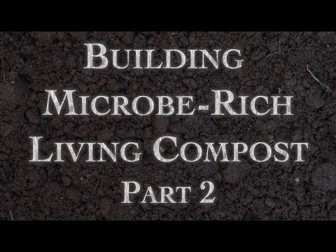 Building Microbe-Rich Living Compost Part 2