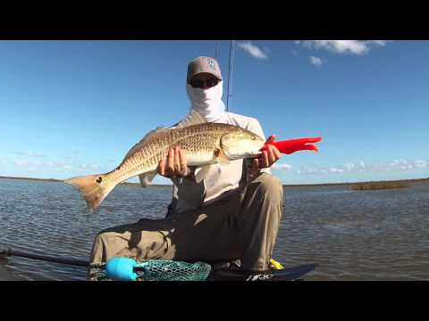 Sight Casting Redfish From A Kayak