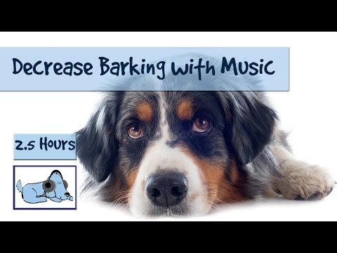 Decrease Barking and Howling from Your Dog with Relaxing, Calming Dog Music.