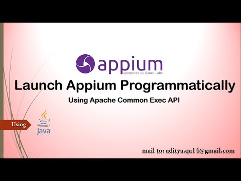 How to Launch Appium Server Programmatically in Java using Apache Common Exec
