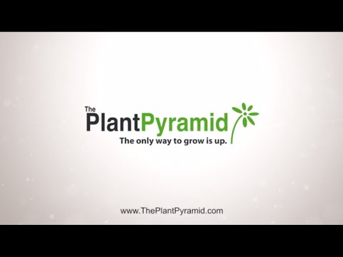 Introducing the Plant Pyramid