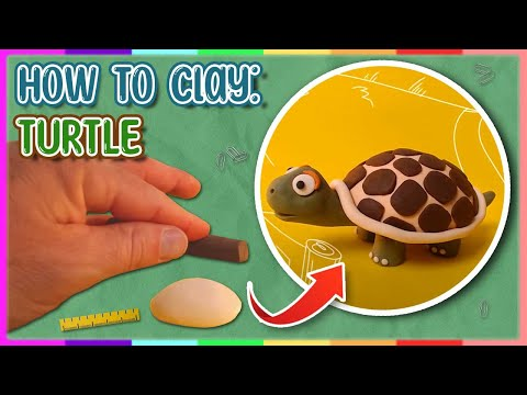 How to make a clay Turtle