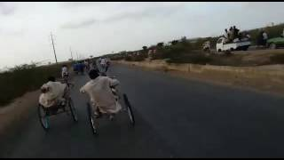 Donkey in Karachi with khulo mama