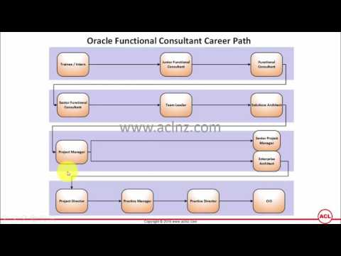 What is the career path of Oracle Functional Consultant?