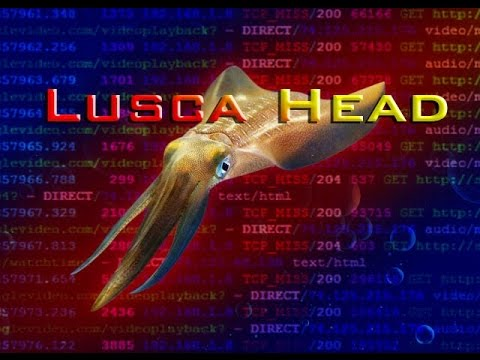 Installing Lusca Head on Ubuntu Server as The Proxy Server