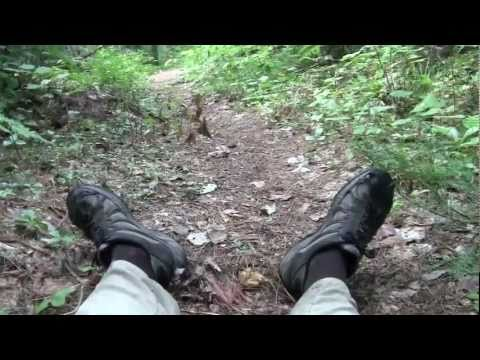 The Portage Show - (10 of 11) Eight Day Solo Canoe Trip with my Dog