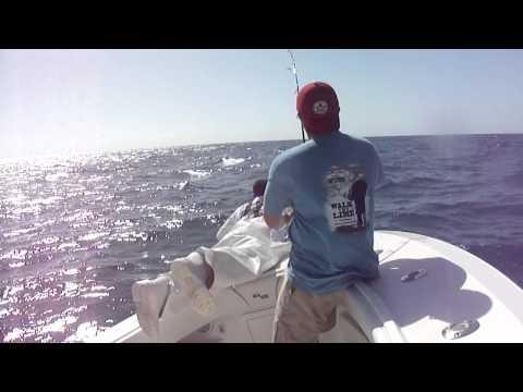 Mike Halverson catching his first sailfish!! Thanks to Captain BJ Meyer of Marathon Florida!!