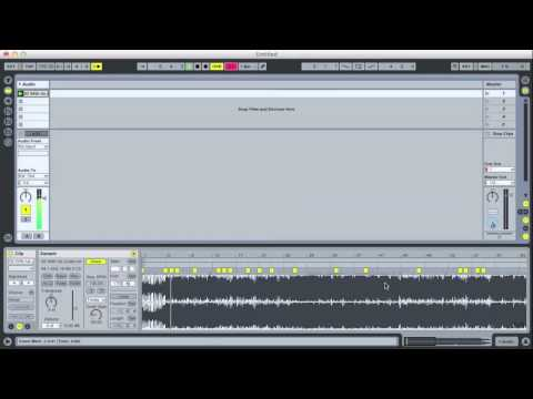 Warping and Transposing in Ableton