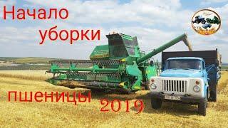 Начало уборки пшеницы Комбайн НИВА СК-5 🔴Молдова 2019