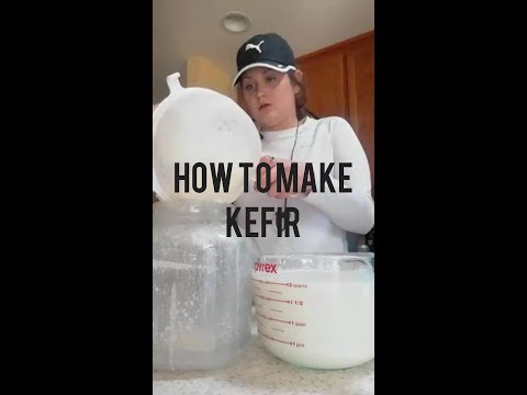 How to make kefir for beginners