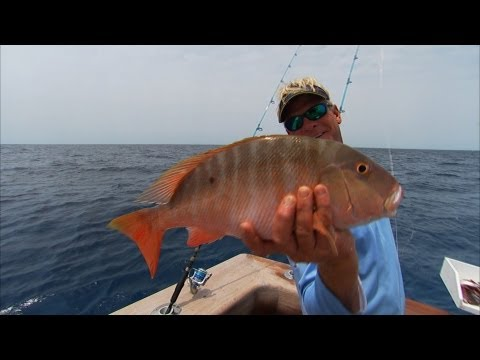 Bimini Bahamas Fishing For Snapper and Grouper Offshore
