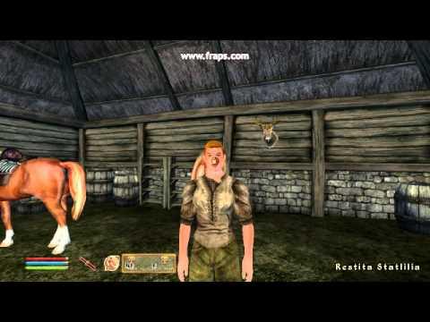 Oblivion Gamemode Persuasion mod