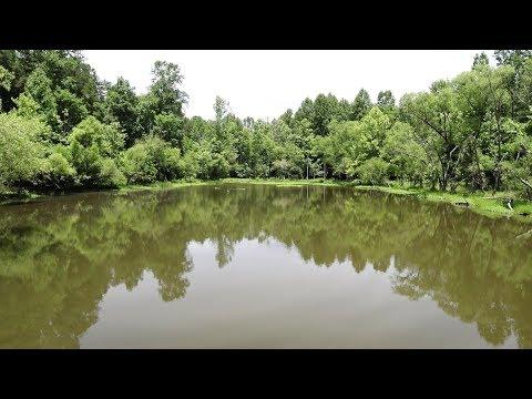 Brief Hiking Tour of Lake Mackintosh Park - Gibsonville, NC