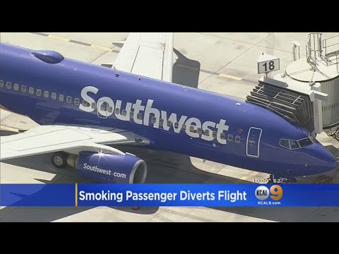 Jet Bound For LAX Makes Emergency Landing After Passenger Tries To Smoke Pot