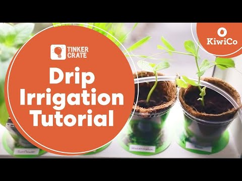 Make a Drip Irrigation System - Tinker Crate