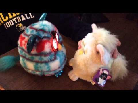 When Furbies Meet ...