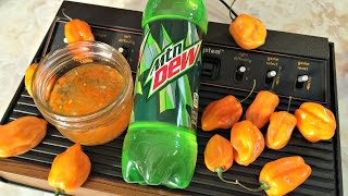 Mountain Dew soda meets pepper jam when Drunken Master Paul creates a tasty Gamer snack that is super easy and anybody can make!  Mountain Dew Pepper Jam RECIPE: Ingredients 16 oz. bottle of Mountain Dew 1/2 to 3/4 cup finely chopped Habanero peppers (10-12) 1/2 cup finely diced onion 3 cloves finely diced garlic 1 cup sugar 2 1/2 tbsp Classic fruit pectin  Dump all ingredients except sugar into saucepan, including pectin.    Bring to boil over medium high heat, stirring a lot  When foamy remove from heat and add sugar.  Return to boil for 30 seconds.  Remove from heat for about 5 minutes,  then transfer to jars.  when cooled, put jars in fridge.  Eat after a couple days with cream cheese on cracker or just with a spoon in the shower.  Don